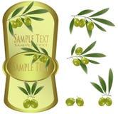 Escritura de la etiqueta amarilla con las aceitunas verdes. Fotografía de archivo libre de regalías