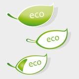 Escritura de la etiqueta de Eco Imagen de archivo libre de regalías