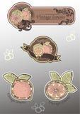 Escritura de la etiqueta del limón de la vendimia Stock de ilustración