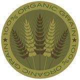 Escritura de la etiqueta orgánica del grano del tallo el 100% del trigo Fotos de archivo libres de regalías