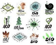 Escritura de la etiqueta orgánica Iconos frescos y sanos de la comida Bio logotipo orgánico, logotipo de Eco Fotos de archivo libres de regalías