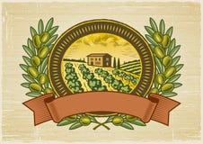 Escritura de la etiqueta verde oliva de la cosecha Imágenes de archivo libres de regalías