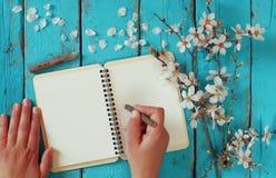 Escritura de la mujer en el cuaderno en blanco al lado del árbol blanco de las flores de cerezo de la primavera en la tabla de ma Foto de archivo libre de regalías