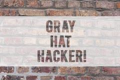 Escritura de la nota que muestra a Gray Hat Hacker Experto de exhibición de la seguridad informática de la foto del negocio que p fotos de archivo libres de regalías