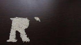 Escritura del arroz de la palabra con las semillas del arroz usando el movimiento y la animación de parada ilustración del vector