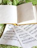 Escritura-libro y notas Fotografía de archivo