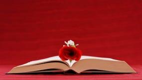 Escritura romántica Foto de archivo libre de regalías