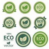 Escrituras de la etiqueta de Eco. Imagen de archivo libre de regalías