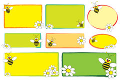 Escrituras de la etiqueta del cabrito - abeja y margaritas Fotografía de archivo libre de regalías