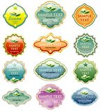 Escrituras de la etiqueta del eco del color Imagen de archivo