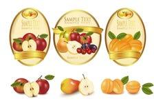 Escrituras de la etiqueta del oro con diversas clases de fruta. Vector. Imagenes de archivo