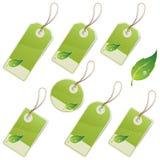 Escrituras de la etiqueta del verde Fotografía de archivo libre de regalías