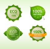 Escrituras de la etiqueta del verde de Eco Fotografía de archivo libre de regalías