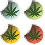 Escrituras de la etiqueta frescas del palillo con marijuana Imagen de archivo libre de regalías
