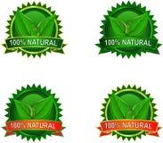 Escrituras de la etiqueta naturales del producto de Eco Fotos de archivo