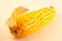 Escroquerie de maïs Images stock