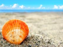 Escudo alaranjado na areia fotografia de stock royalty free