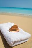 Escudo com a toalha na praia. fotografia de stock