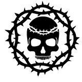 escudo de armas del cráneo del grunge Imagen de archivo