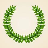 Escudo de armas verde Fotografía de archivo libre de regalías