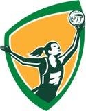 Escudo de cogida de la bola del jugador del netball retro Imagen de archivo libre de regalías