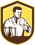 Escudo de Lab Researcher Chemist del científico retro Imagenes de archivo