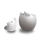 Escudo de ovo Fotos de Stock