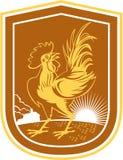 Escudo del resplandor solar de la casa del gallo del pollo retro Imágenes de archivo libres de regalías