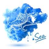 Escudo do mar ilustração royalty free
