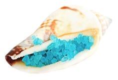 Escudo do mar com sal azul do mar inoperante imagens de stock