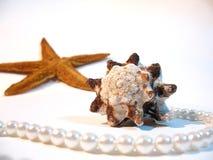 Escudo, estrela, pérolas Imagem de Stock Royalty Free