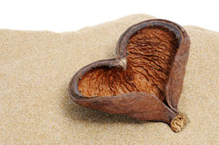Escudo Heart-shaped foto de stock royalty free
