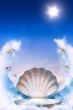 Escudo para o Aphrodite imagem de stock royalty free