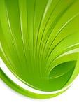 Escudo verde Imagens de Stock