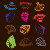 escudos Foto de Stock Royalty Free