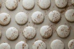 Escudos cozidos da cookie de Macaron da canela imagem de stock royalty free
