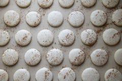 Escudos cozidos da cookie de Macaron da canela imagens de stock