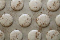 Escudos da cookie de Macaron da canela de Unaked imagens de stock royalty free