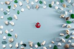 Escudos diferentes do mar na configura??o lisa cinzenta da opini?o superior do fundo imagem de stock royalty free