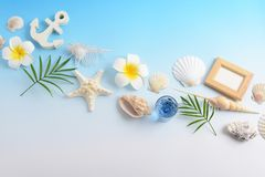 Escudos do mar com flores foto de stock royalty free