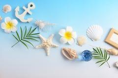 Escudos do mar com flores imagens de stock royalty free