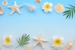 Escudos do mar com flores foto de stock