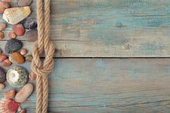 Escudos e pedras do mar Imagem de Stock