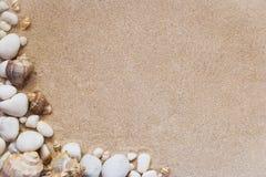 Escudos e pedras do mar com a areia como o fundo Imagem de Stock Royalty Free