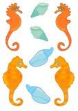Escudos e SeaHorses Fotografia de Stock
