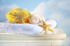 Escudos e toalha do mar no gabinete imagem de stock