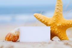 Escudos e um cartão em branco na praia imagens de stock royalty free