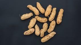 Escudos fervidos tailandeses do amendoim no fundo preto foto de stock royalty free