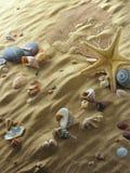Escudos na areia fotos de stock