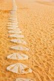 Escudos na estrada da praia Fotografia de Stock